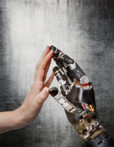 prosthetic_limbs PNAS
