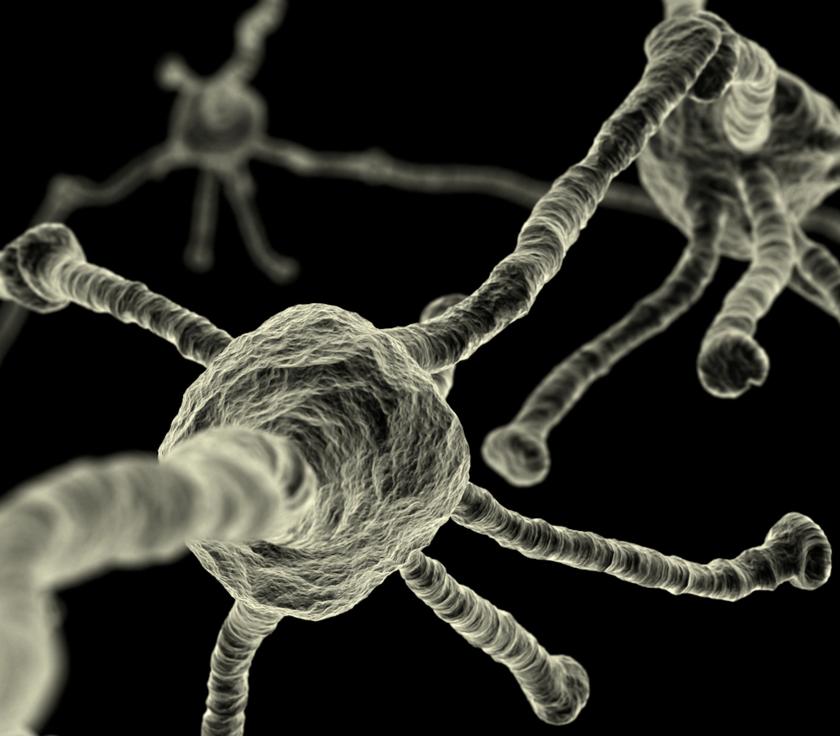 neuronal_network